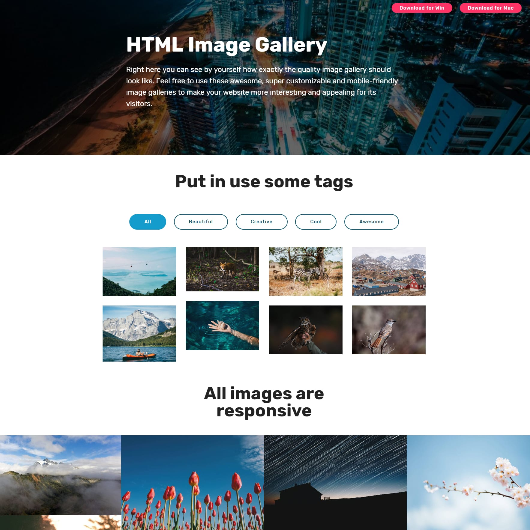 Responsive Bootstrap Picture Gallery