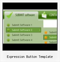 Insert Menu Frontpage Insert Accordian Menu In Expression Web