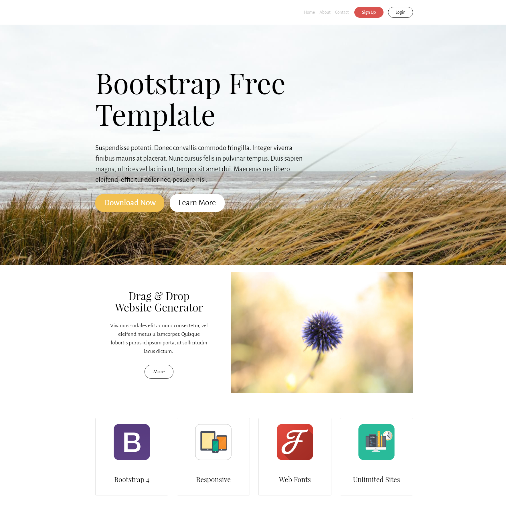 Responsive Bootstrap PurityM Templates