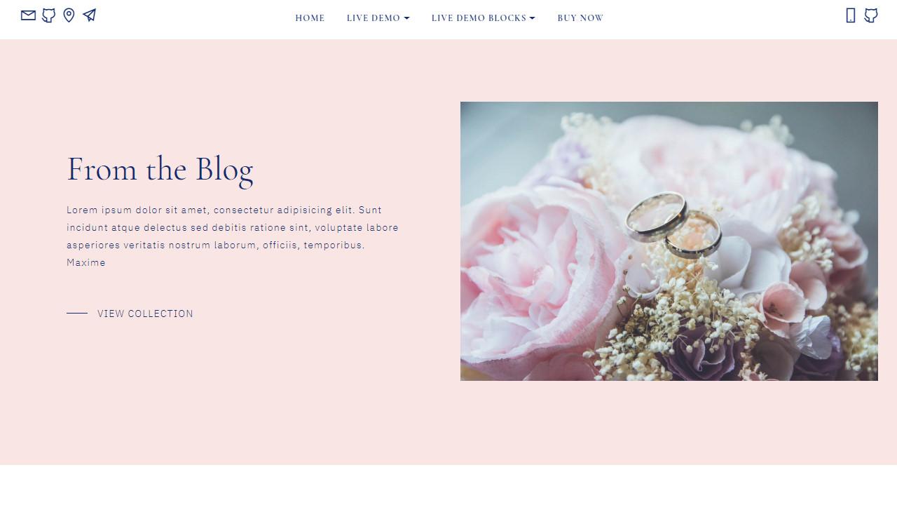 offline website editor